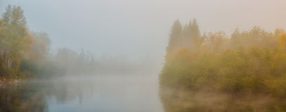 Fog and fall colors Stock Images