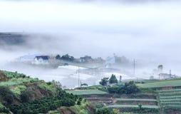 Fog in farm, Da Lat city Stock Photography