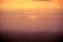 Fog field of grass during sunset Royalty Free Stock Photography