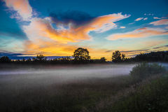 Fog in the field Stock Photography