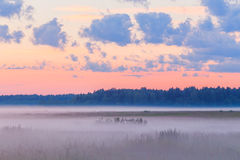Fog in the fields landscape pink sky mist morning Stock Photo