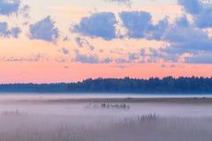 Fog in the fields landscape pink sky mist morning Stock Photo