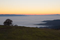 Fog filling a valley at sunset Stock Photos