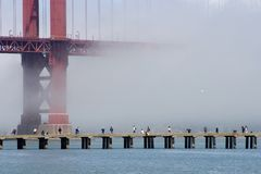 Fog Fishing. Fisherman on a cement pier with a fog shrouded golden gate bridge in the background stock images