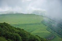 Fog floating in alpine meadows stock photo