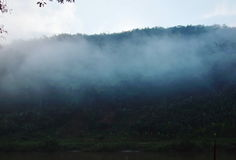 Fog floating cover banana tree and mountain beside river Royalty Free Stock Photo