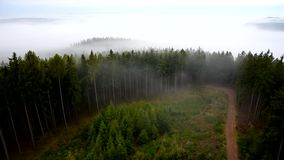 The fog floats among the trees. Czech Republic stock footage