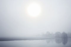 Fog and flood. In the early spring morning royalty free stock photo
