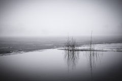 Fog and flood. In the early spring morning Royalty Free Stock Photography