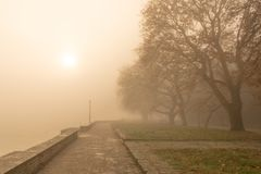 Fog foggy wheaher and autumn yellow trees colors in ioannina gr. Fog foggy wheaher and autumn yellow trees and colors in ioannina greece royalty free stock photo