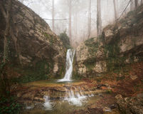 Fog forest. Beautiful fog forest and waterfall Royalty Free Stock Photos