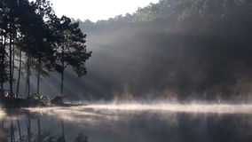 Fog on the forest camping morning lake stock video footage