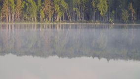 Fog on the forest lake in the morning. Fog on the forest lake early in the morning stock video footage
