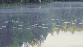 Fog on the forest lake in the morning. Fog on the forest lake early in the morning stock footage