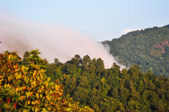 Fog on the forest mountains in Nepal Royalty Free Stock Photo