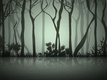 Fog Forest Near Lake Stock Image
