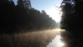 Fog, grass, trees against the backdrop of river and nature. Fishing background. Misty morning in wilderness.  stock footage