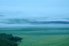Fog on grassland Royalty Free Stock Photography