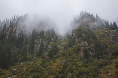 Fog. Green hills and fog in the air Royalty Free Stock Image