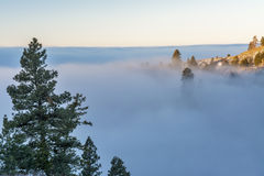 Fog has filled the valley in the mountains Royalty Free Stock Photo