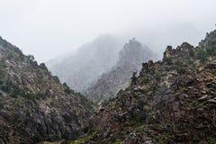 Fog & Heavy Rain in a Colorado Canyon Stock Photography