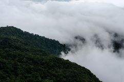 Fog on high mountain in Phu Ruea National Park, Loei Province, T royalty free stock photo