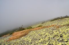 Fog on a hillside. Stock Image