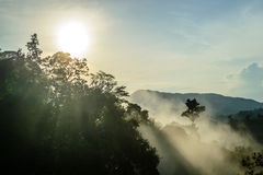 Fog on the hilltop and sunrise backgrounds Royalty Free Stock Photo