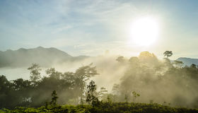 Fog on the hilltop and sunrise. Thailand Royalty Free Stock Photography