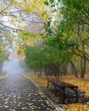 Fog In Autumn Park Stock Image