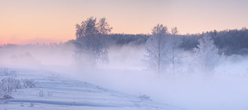 Free Fog In Winter Morning. Christmas Winter Dawn. Royalty Free Stock Photo - 81672865