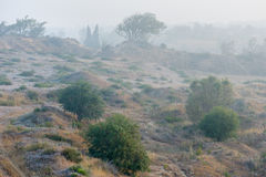 Fog in the Israel Stock Images