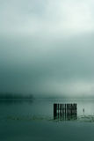 Fog on lake. Earky in the morning royalty free stock photography
