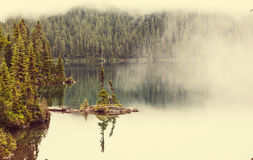 Fog on the lake Stock Photo
