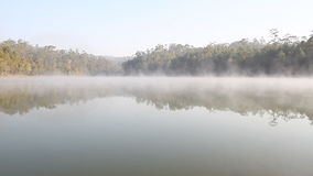 Fog on lake morning and sunrise in spring. A beautiful stock video footage