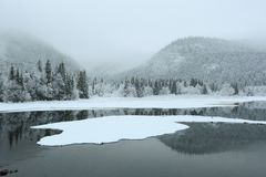Fog at the lake Selbu. Located in Norway near the city Trondheim stock photos