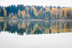 Fog on the lake Senezh in Solnechnogorsk fall in calm weather Royalty Free Stock Photos