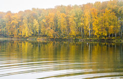 Fog on the lake Senezh in Solnechnogorsk fall in calm weather Stock Photography