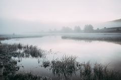 Fog on the lake. Surface early in the morning stock photos