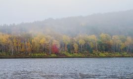 Fog on lake during Autumn at Acadia National Park royalty free stock image