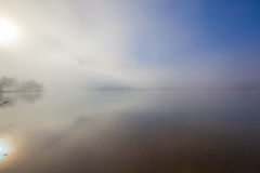 fog lake water foggy tree landscape meadow Royalty Free Stock Photography