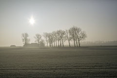 Fog on the land Stock Photography