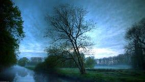 Fog landscape Stock Images