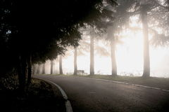 Fog landscape. Italian country landscaper through the fog Royalty Free Stock Images