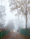 Fog in the late of autumn Royalty Free Stock Photography