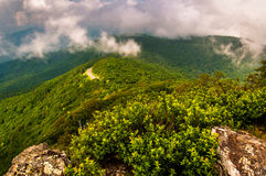 Fog and low clouds over the Blue Ridge Mountains, in Shenandoah National Park Stock Images