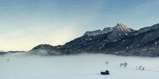Fog at meadow with trees and huge mountain Stock Images