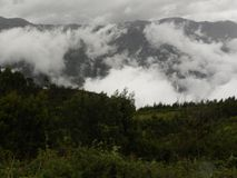 Fog, mist, clouds covered Palani hills of western ghats Royalty Free Stock Photo