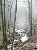 Fog and mist in english wodland with a mountain stream. Running thought it in west yorkshire england in winter Stock Photography
