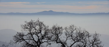 Fog and mist fall over the mountain hilltops of trees in the early morning Stock Photography